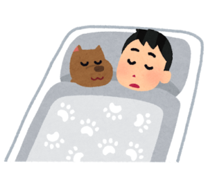 マコなり社長のナイトルーティン⑰ 23時くらいには快適なベッドで就寝する