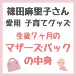 篠田麻里子さん愛用子育てグッズ|生後7ヶ月のマザーズバッグ中身 まとめ