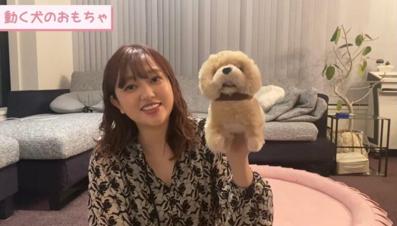 【Youtube|あみちゃんねる】菊地亜美さんが「買って良かったおすすめおもちゃ」